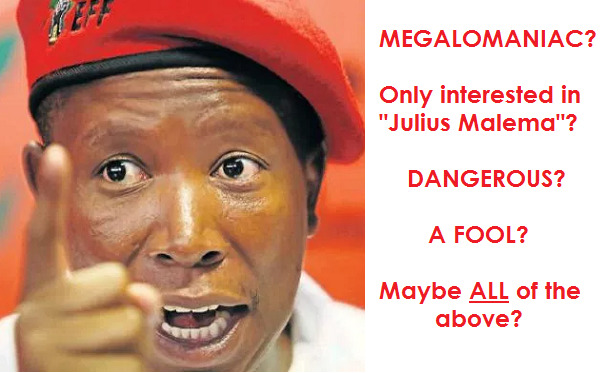 MALEMA - CUTTING OFF HIS NOSE TO SPITE HIS FACE.